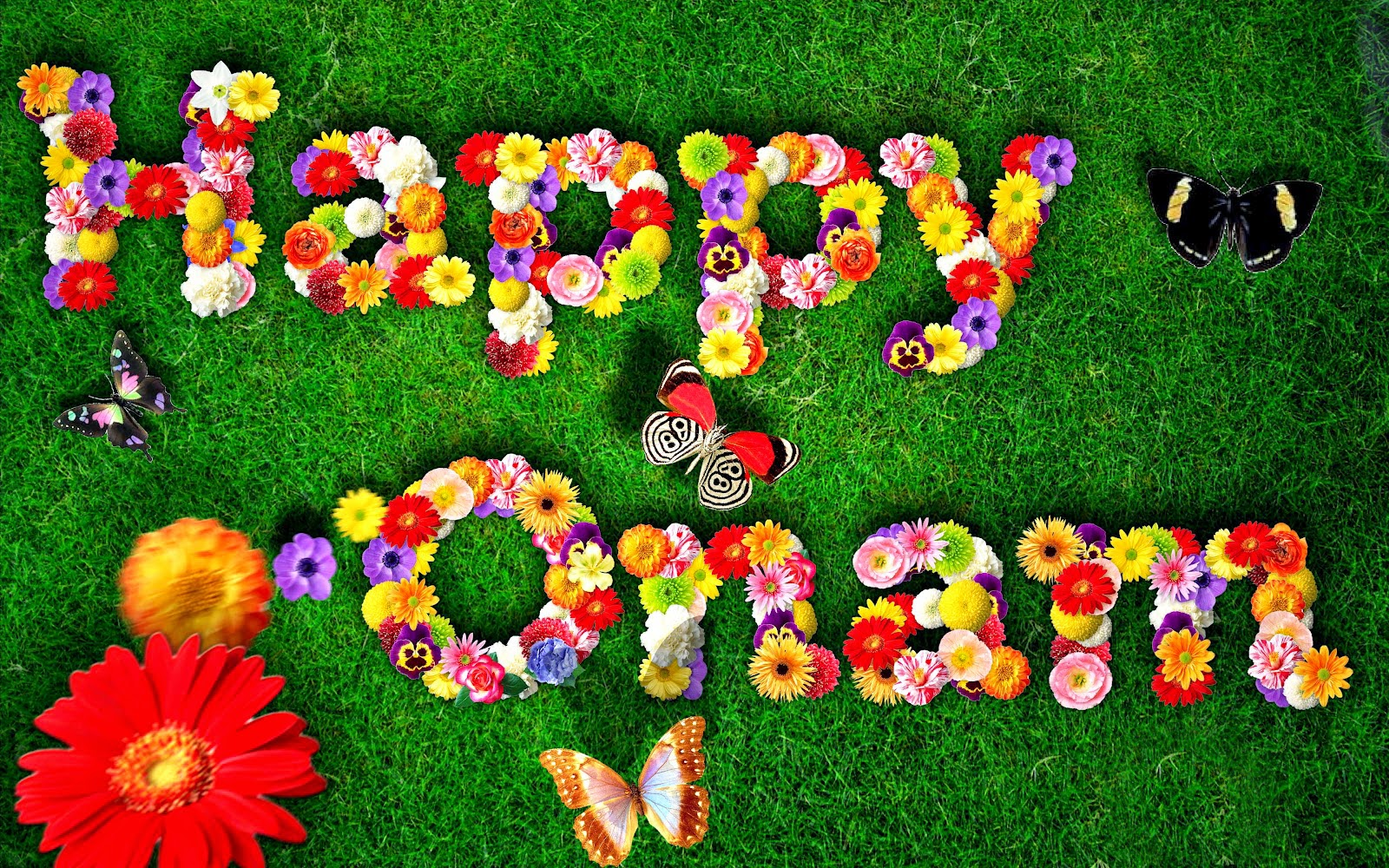 Onam 2015 flower design wallpaper creative image