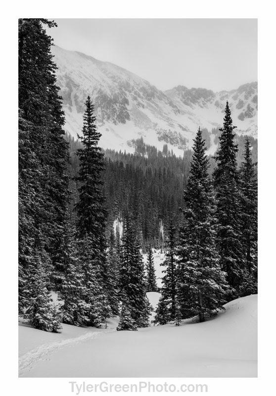 williams peak trail