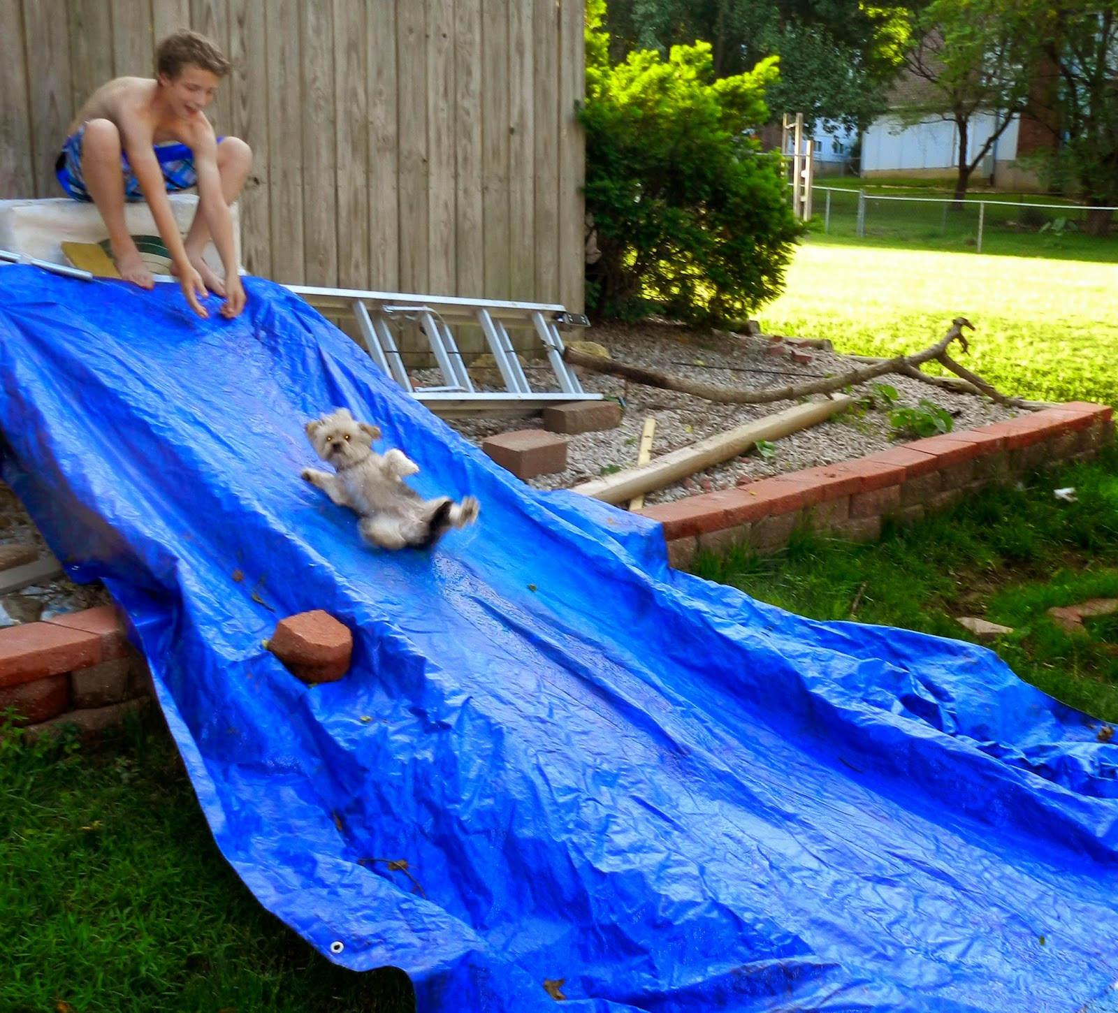 The Arnott Family Blog  Homemade Water Slide