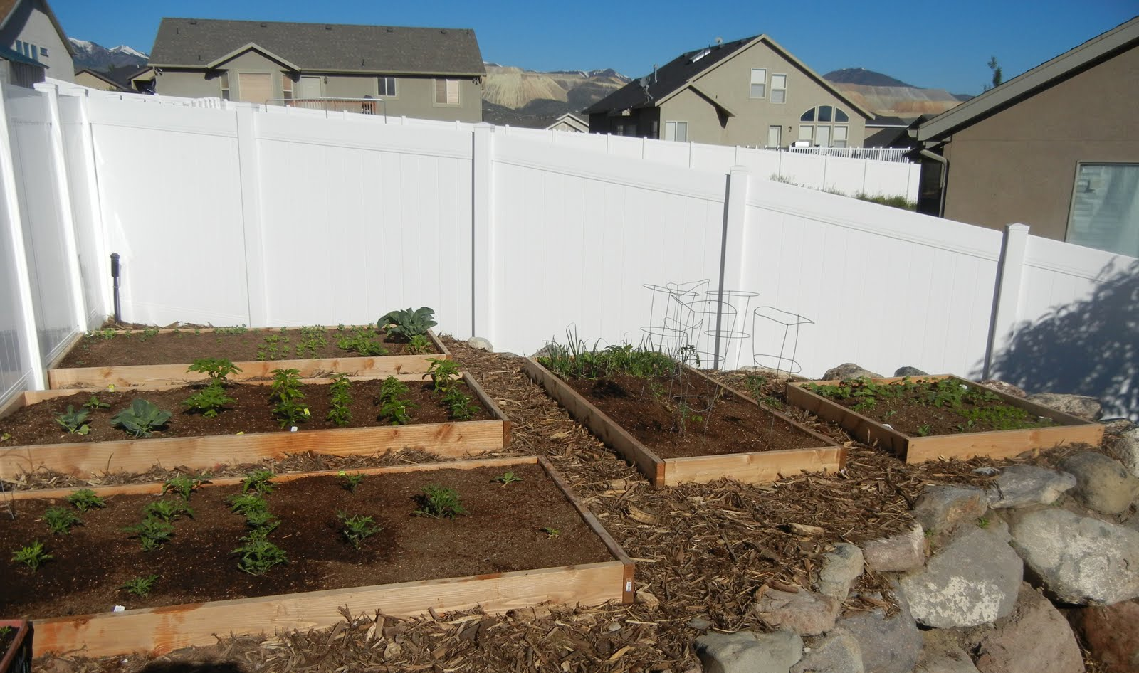 My Square Foot Garden Plan-2011 | Deals to Meals