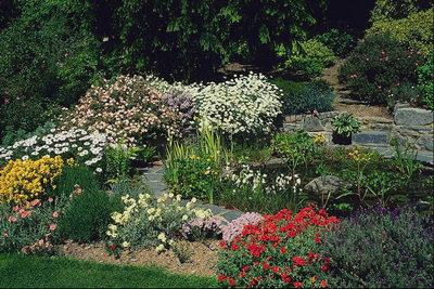 Arte y jardiner a el cuidado de arbustos y plantas - Plantas para vallas ...