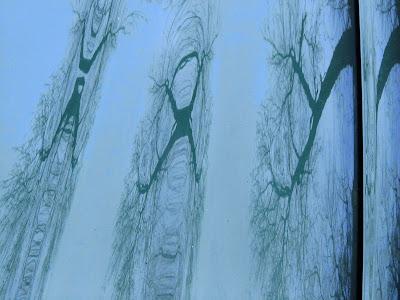 dAnielles flow