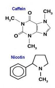 untuk hidup ujian mid semester kimia bahan alam