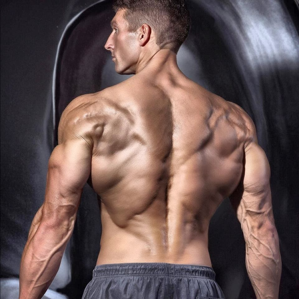 Aaron Murphy, aesthetic muscle, bodybuilder, great abs, male fitness model, male model, muscle, physique, ripped muscles, vascular muscle,