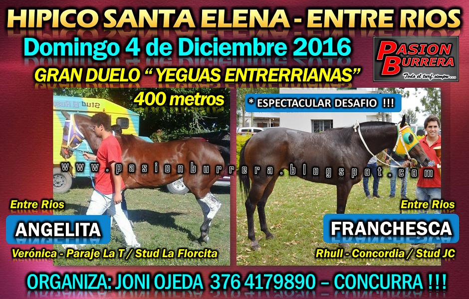 SANTA ELENA - 4 - 400 - yeguas
