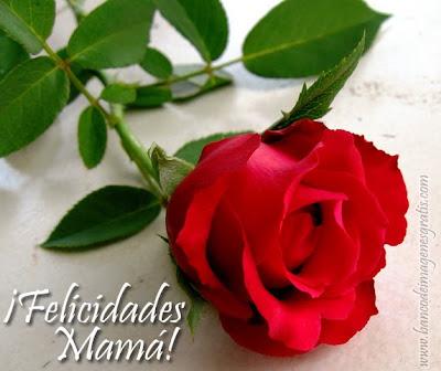Rosas de colores con mensaje para el Día de las Madres - Felicidades Mamá