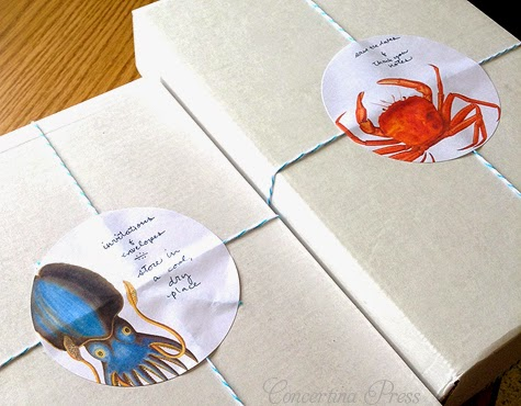 Nautical Wedding Invitation Packaging