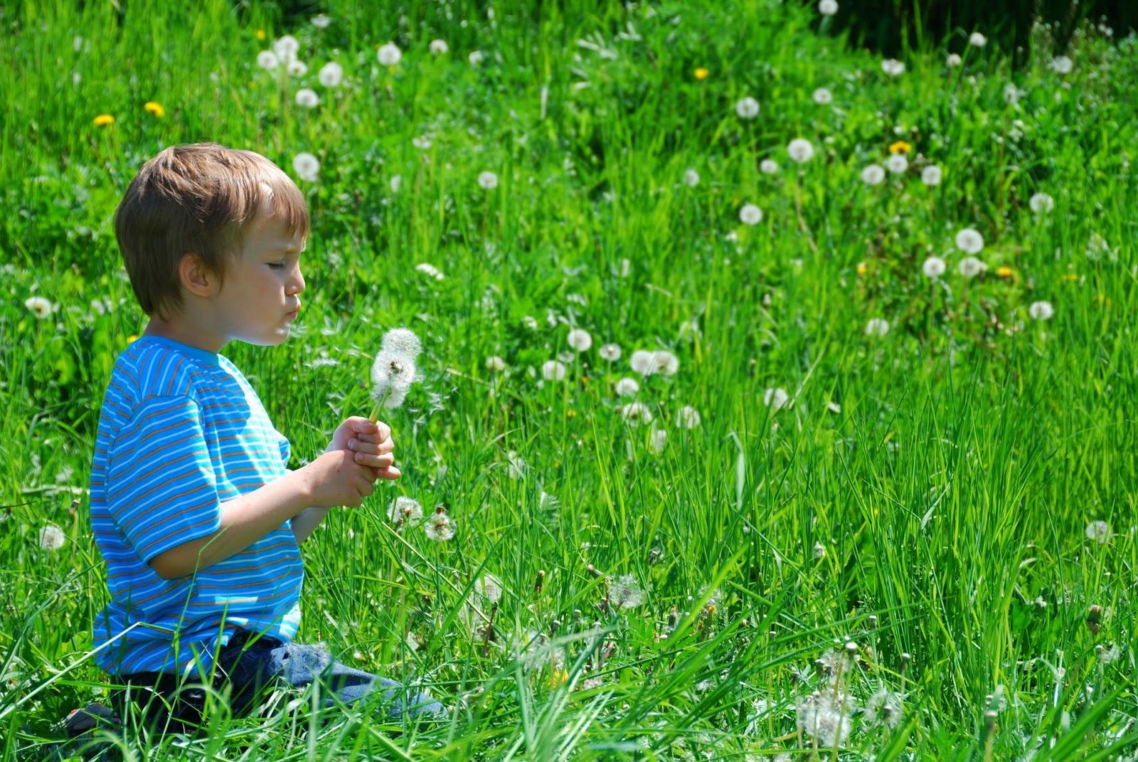 Cortesía Fotolia.com