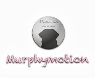 www.murphymotion.de