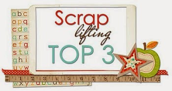 TOP3 Scrap lifting