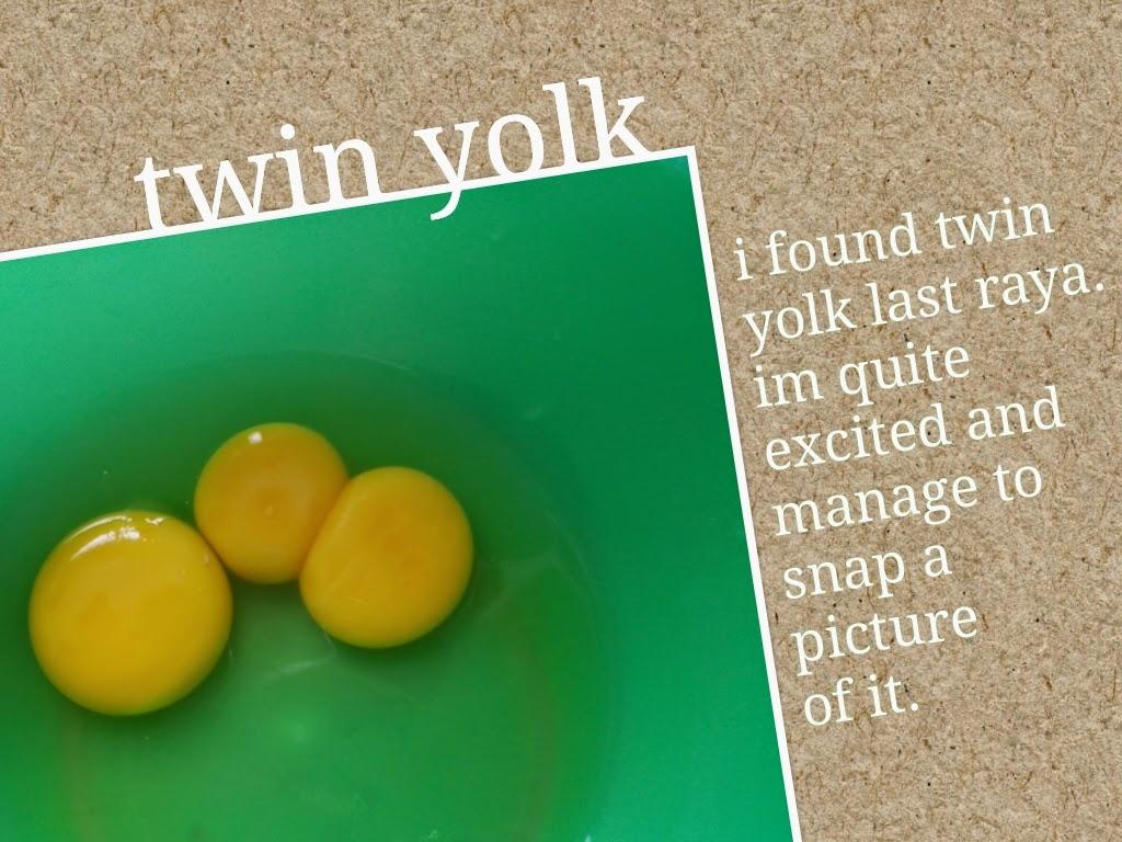 Twin yolk - anak kembar