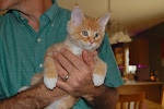 Our New Kitten Fezzik Will Join us in May