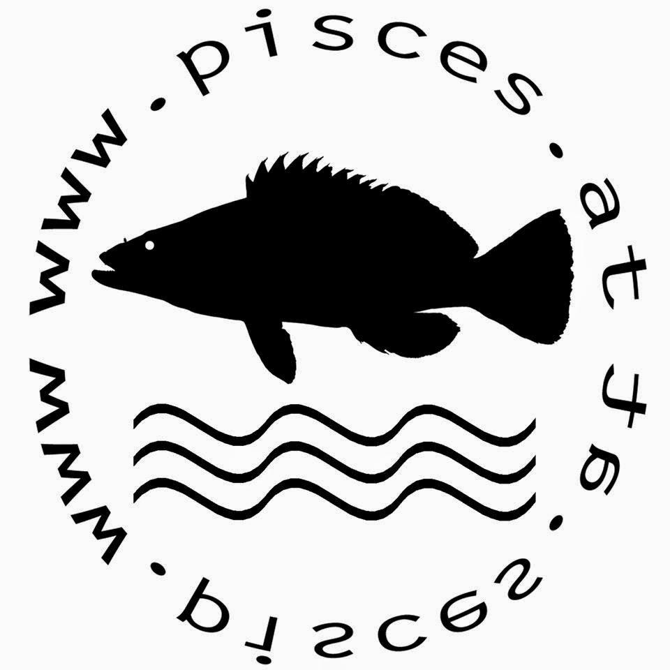 Partner: wunderschöne Fotos und Poster von Mittelmeerfischen