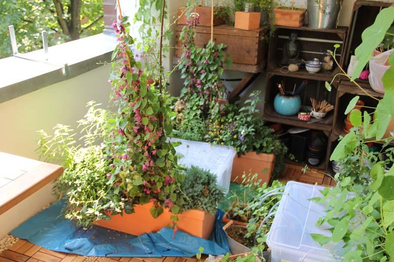 mein balkon coming home. Black Bedroom Furniture Sets. Home Design Ideas