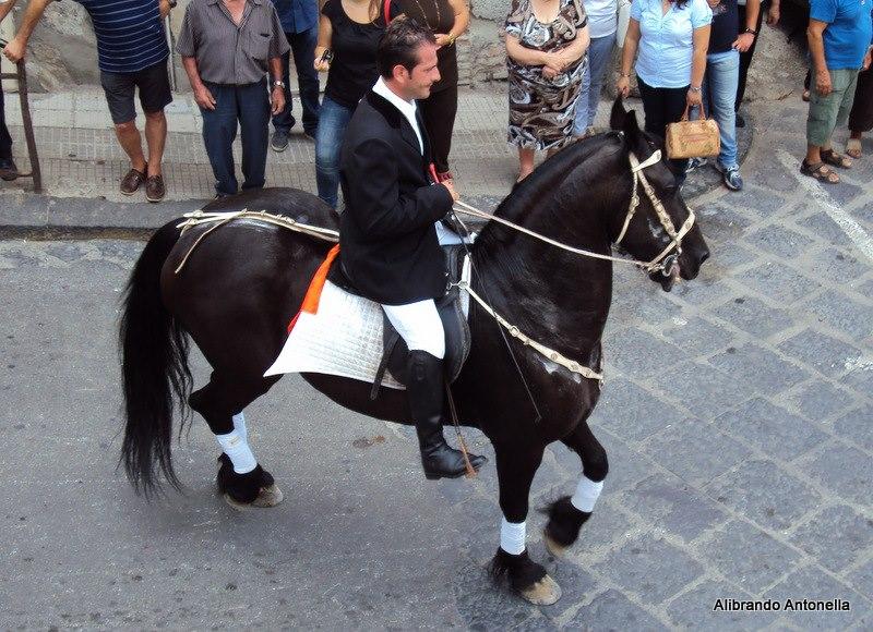 Blog del mela quarta rassegna del cavallo indigeno for Il verso dell asino