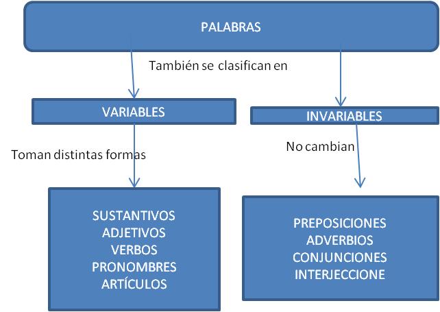 PALABRAS VARIABLES E INVARIABLES PDF