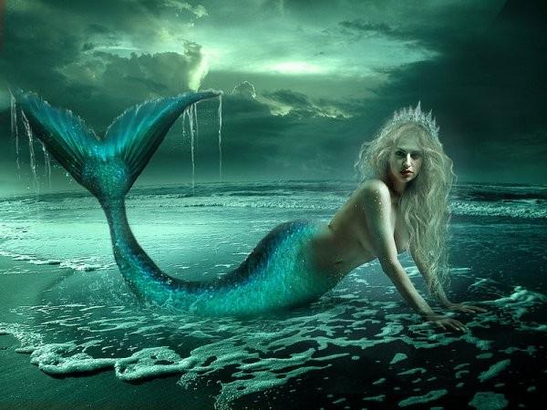 Cfe cgc adecco la petite sir ne vous dit au revoir - Image de sirene h2o ...