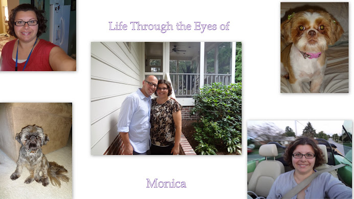Life: Through The Eyes of Monica