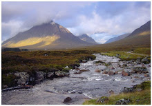A Highland Stream