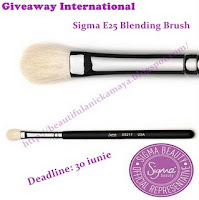 Beautiful Women  Giveaway International Sigma E25 Blending Brush