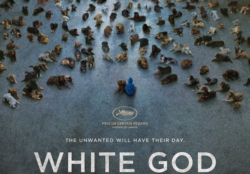 White God: First Look - Undead Monday