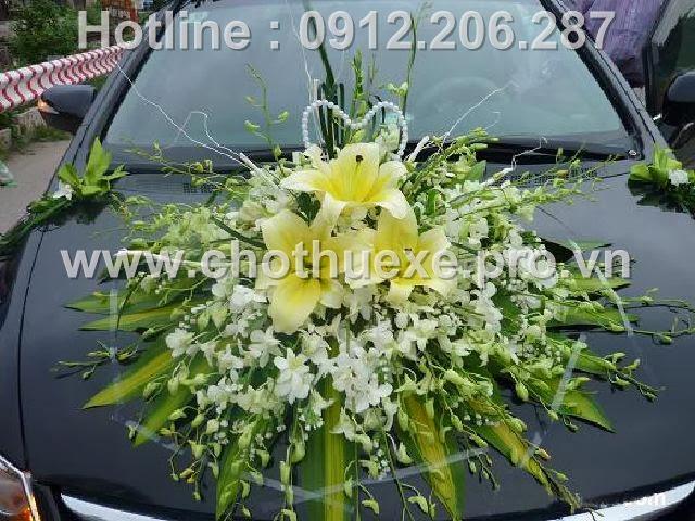 Mẫu xe hoa cưới đẹp XH 076 tại Đức Vinh