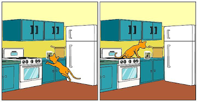 "Cartoon (panel 4) of Cat Ordering Mug from Zazzle ""Proud of Saving Animals"" by RoseWrites"