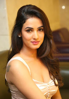 Sonal chauhan new hot photos