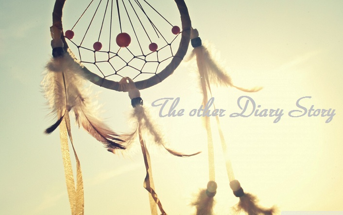 The other Diary Story