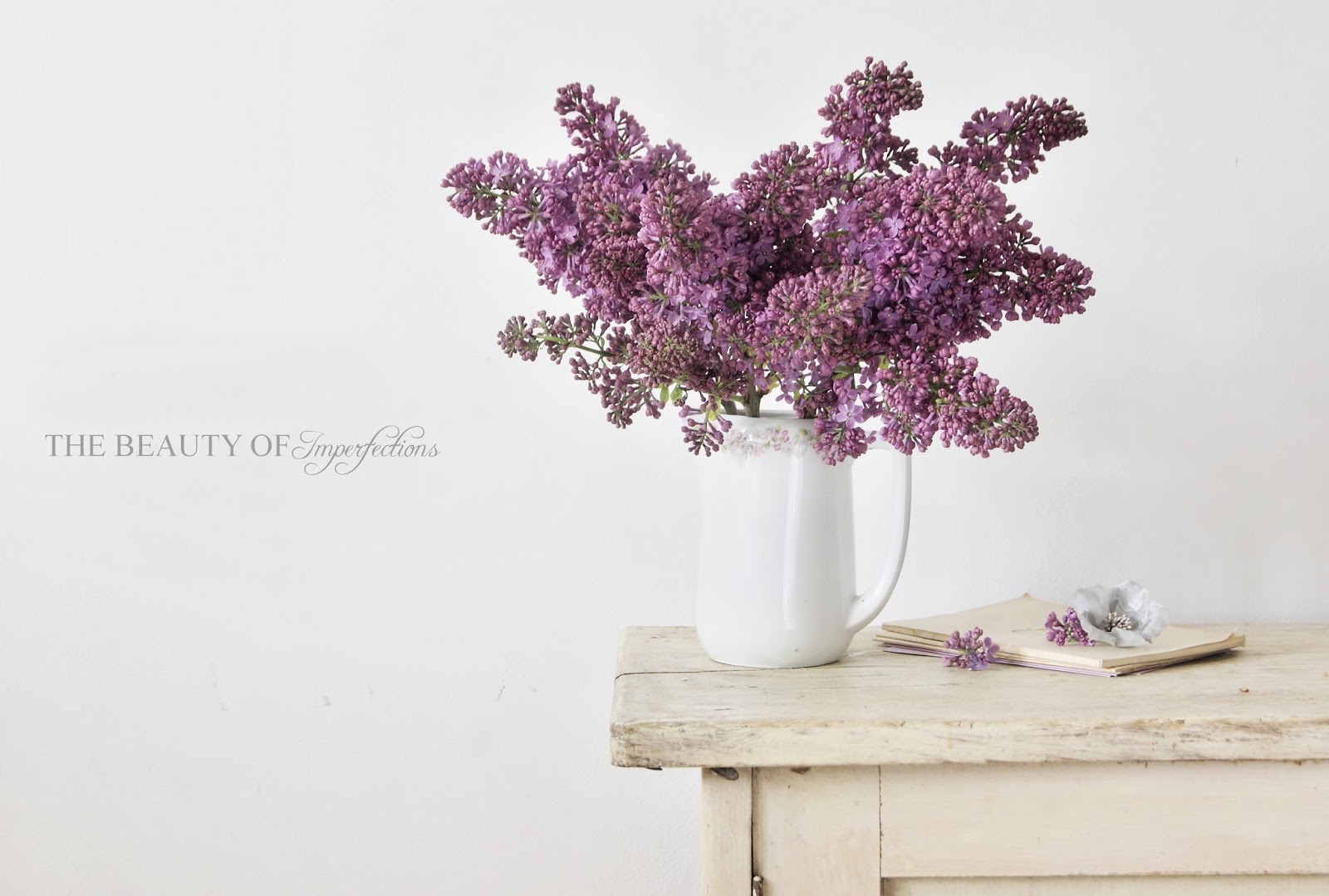 Just lilac (part one)...