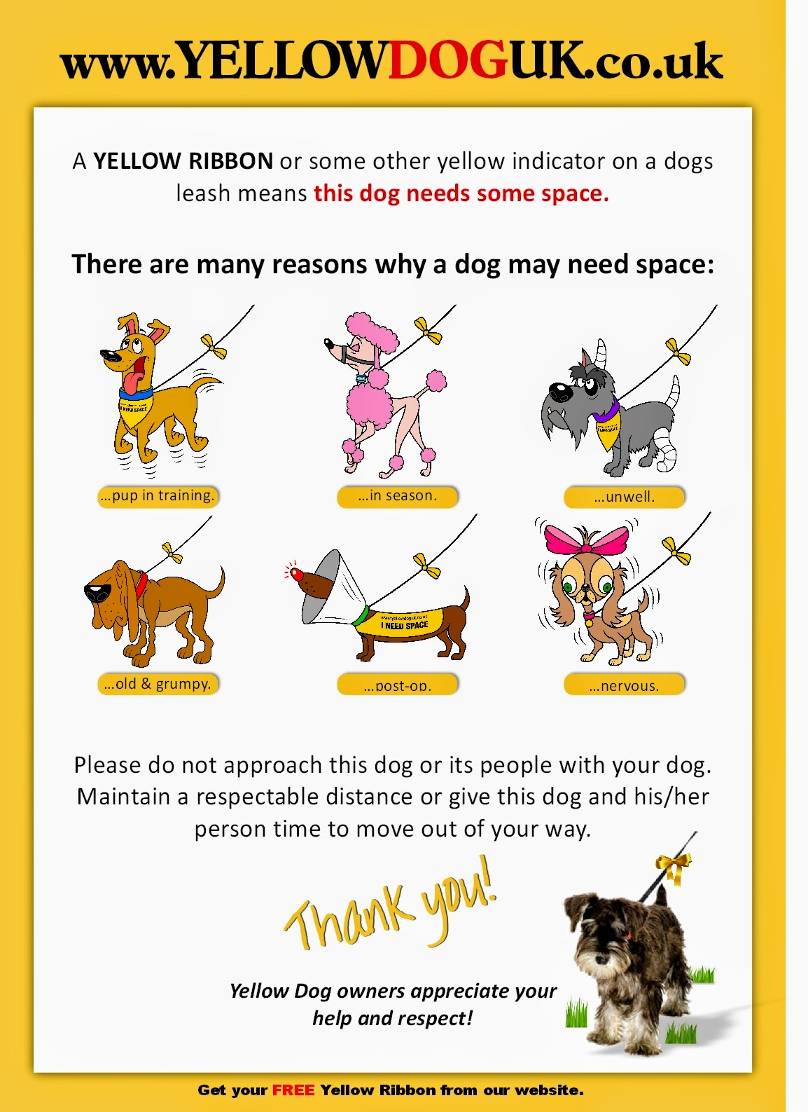 Yellow Dog Campaign
