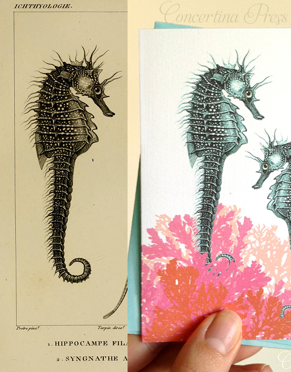 This dull brown seahorse illustration was given new life as a pretty beach wedding invitation