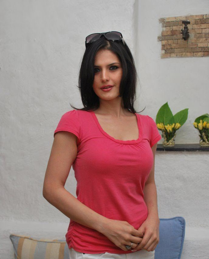 Zarine Khan Hot Zarine Khan Hot Wallpa...