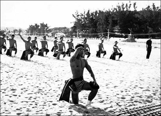 Image result for Biệt Hải Trên Vùng Biển Bão Tố