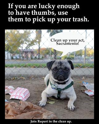 Clean Up Your Act, Sacramento!