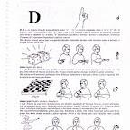 Libras Capovilla Dicionario