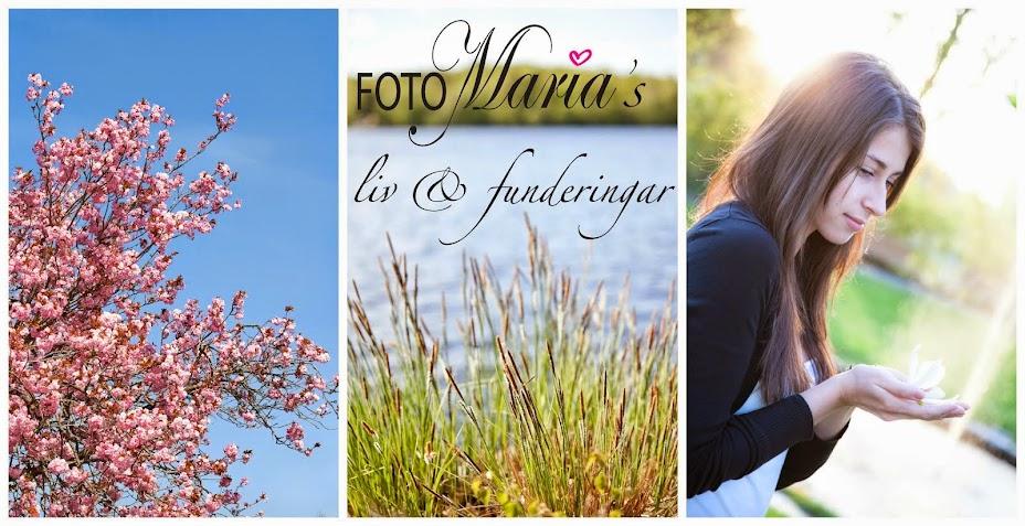 FotoMaria's liv och funderingar