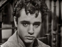 "Icon - Sal Mineo ""Who Killed Teddy Bear?"" (1965) CULT classic + Dino (1956) $9.99 FREE ship"