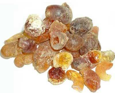 gum arabic export