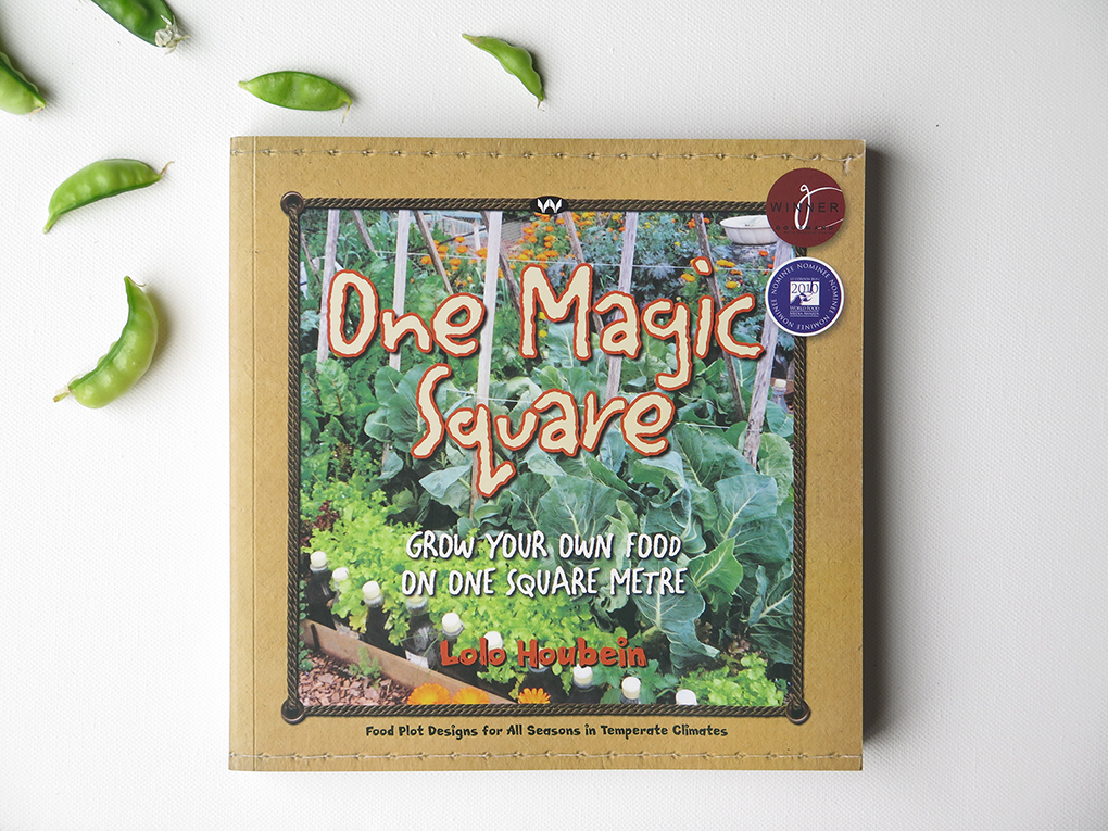 Green Reads: One Magic Square by Lolo Houbein