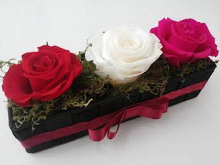 Rosas Naturales Preservadas Rojas Blancas Fucsia ¡Duran 4 Años! Santa Ana, El Salvador