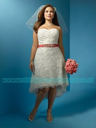 Wedding Blog: Amazing Plus Size Wedding Dresses