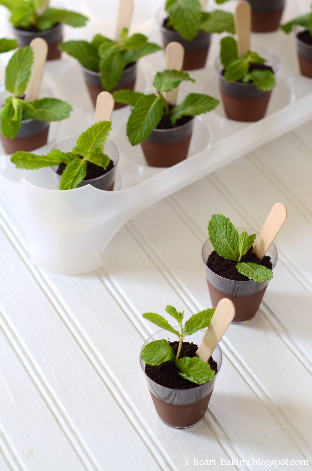 chocolate potted pudding chocolate potted mint chocolate pudding a few ...