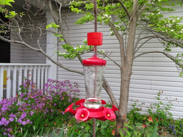 french hollow farm how to keep ants out of your hummingbird feeder diy ant moat. Black Bedroom Furniture Sets. Home Design Ideas