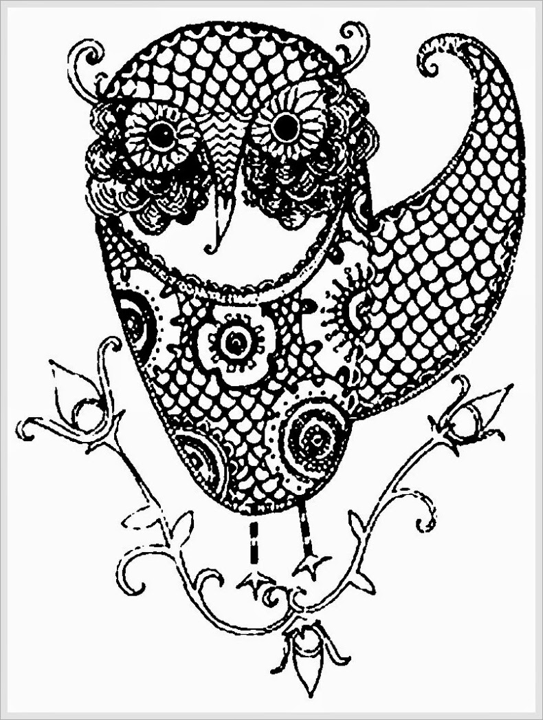 Owl Adult Free Printable Coloring