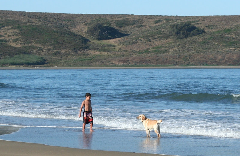 boy of about 7 years standing in the water wearing swim trunks and no shirt, he is looking at cabana and she is standing a few feet in front of him, looking back at him