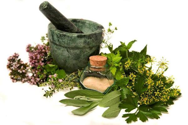 4 Obat Herbal Untuk Hipertensi