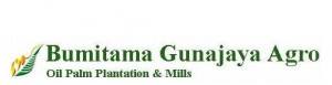Recruitment PT Bumitama Gunajaya Agro (BGA Group)