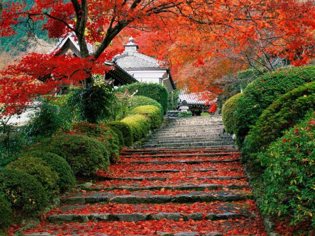 2bpblogspot Hz0P O6GQoY Garden Wallpaper Hd