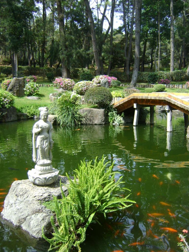 M xico a trav s de la mirada de una cubana jardines japoneses for Jardines mexico